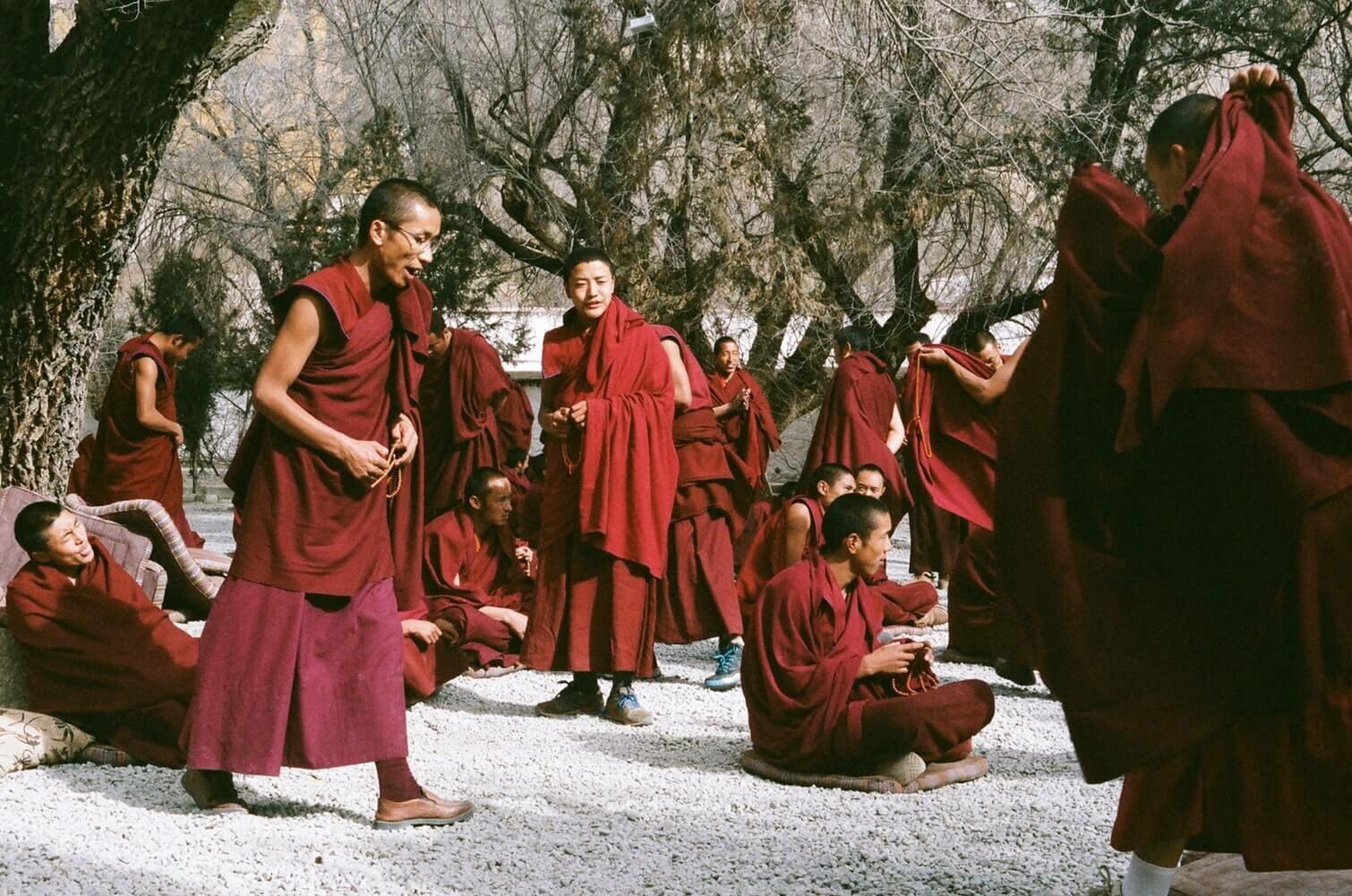 monge-tibetano