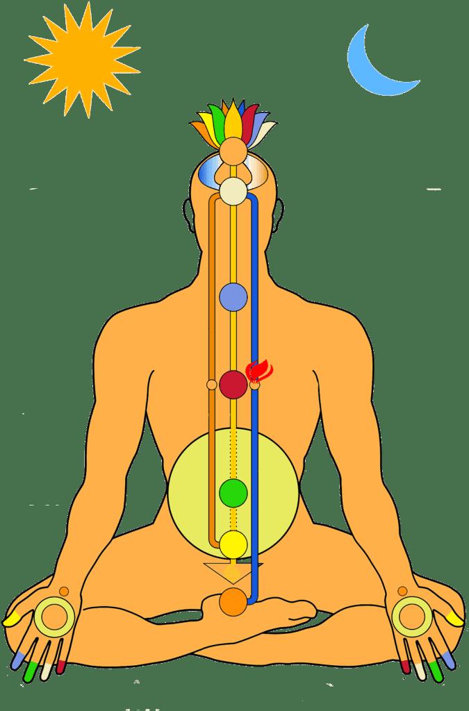 hatha-yoga-yogateria
