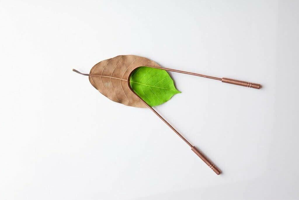 raspador-lingua-yogateria