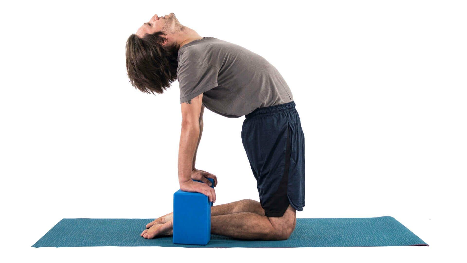 postura-camelo-yogateria6