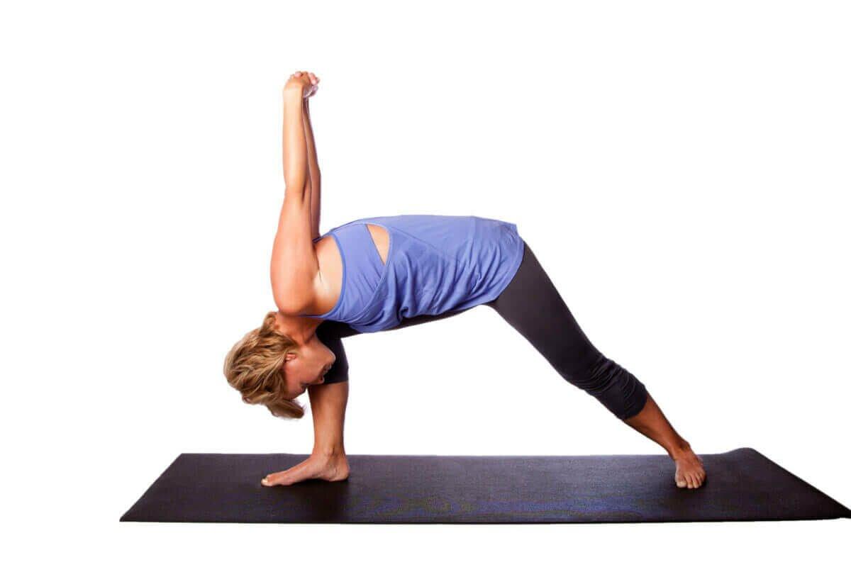 postura-guerreiro-yogateria7