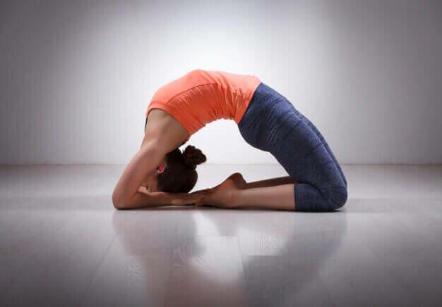 Kapotasana-postura-pombo-yogateria