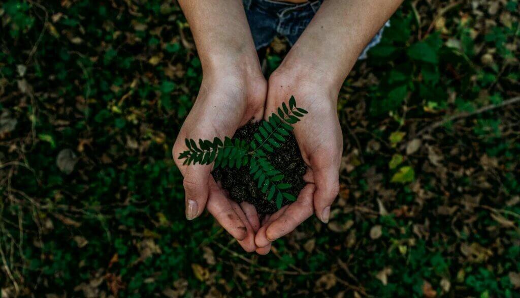descarte de pvc ecológico