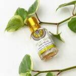 perfume-freshmint-goloka-yogateria-3