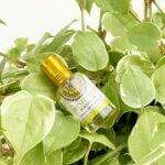 perfume-freshmint-goloka-yogateria-4